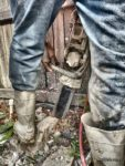 Chainsawing